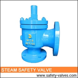 Steam Safety Valve India
